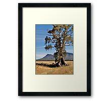 Cazneaux Tree, Wilpena, Flinders Ranges, SA. Framed Print
