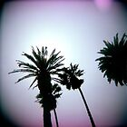 Holga Palms by LeandroF