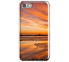 Reflections on a January thaw iPhone Case/Skin
