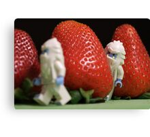 Hide n' Seek in the Strawberry Forest Canvas Print