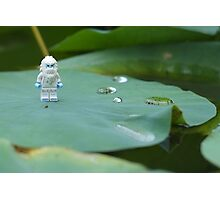 Yeti on a Lily pad Photographic Print
