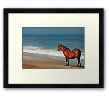 Heavy with bright promise Framed Print