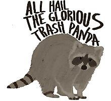 All Hail The Glorious Trash Panda Photographic Print