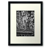 Louisa Porter Framed Print