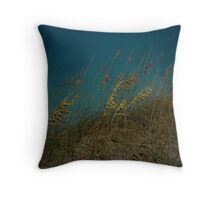 Sea Oats and Storms Throw Pillow