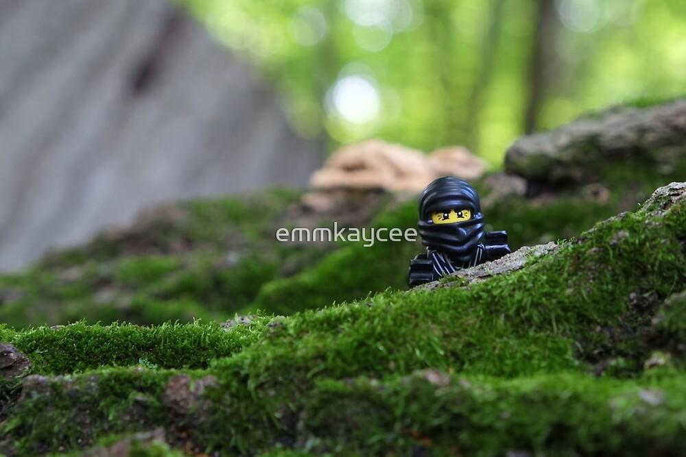 Forest Ninja By Emmkaycee Redbubble