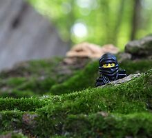 Forest Ninja  by emmkaycee