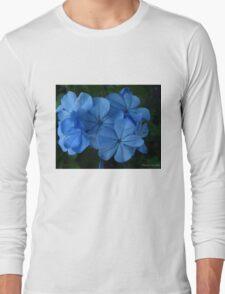 Violet Blue T-Shirt