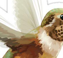 Hummingbird Illustration Sticker