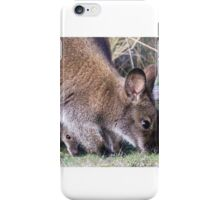Wallaby and joey iPhone Case/Skin