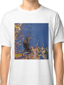 Bird eating a dragonfly Classic T-Shirt