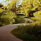 meandering path by Savannah Regier