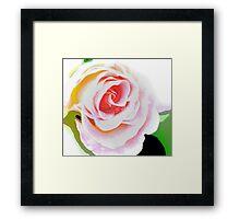 Unfurling Rose - abstract Framed Print