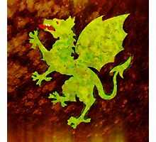 Green Dragon by Sarah Kirk Photographic Print