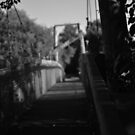 shady bridge by Savannah Regier