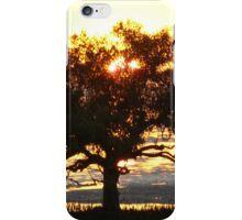 Sunrise Clairview, MangroveTree  iPhone Case/Skin