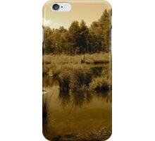 Dimmed Lake iPhone Case/Skin