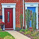Doors by Eileen McVey