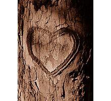 Tree Heart Photographic Print
