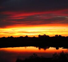 Sunset Swirl by Nathan Little