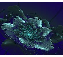 Fantasy shining flower on a dark background Photographic Print