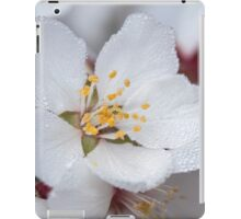 ~ Allow Yourself to Blossom ~ iPad Case/Skin