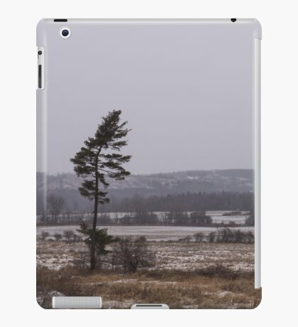 Canadian North - Lone Pine, Fields, Hills and Fresh Snow iPad Case/Skin