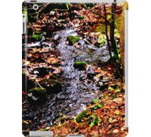 Glencorse Burn iPad Case/Skin