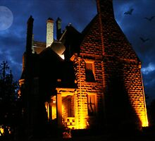 Spooky !!!! - please view large by AnnDixon