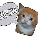 Meow by Jordan Williams