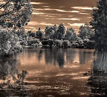 Westfield Heron Reserve IR by BigAndRed