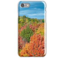 Cut River Autumn Color iPhone Case/Skin