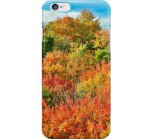 Autumn at Cut River iPhone Case/Skin