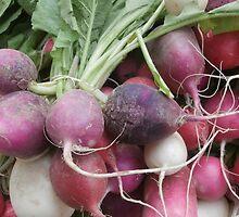 Farmer's Market by Sarah Schwartz