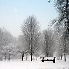 The Park Bench In Winter by kkphoto1