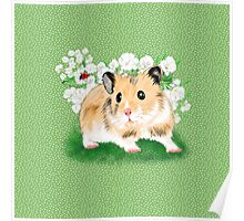 Cute Golden Syrian Hamster by LeahG Poster
