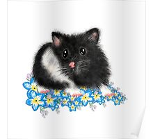Cute black and white Syrian Hamster Art by LeahG Poster
