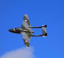 Vampire taken @ classic air force museum Cornwall by Len  Pinner