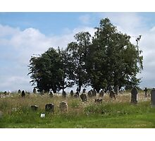 Going Wild in a Country Churchyard Photographic Print