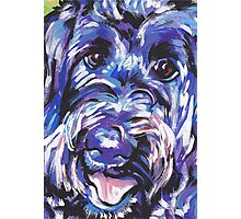 Labradoodle Dog Bright colorful pop dog art Photographic Print