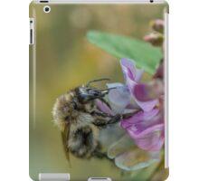 Bee 13 iPad Case/Skin