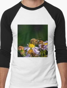 Bee 14 Men's Baseball ¾ T-Shirt
