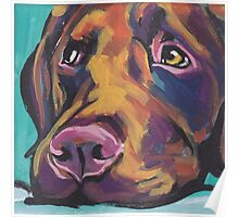 Chocolate Labrador Retriever Dog Bright colorful pop dog art Poster