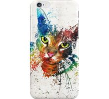 Colorful Cat Art by Sharon Cummings iPhone Case/Skin