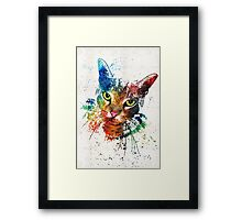Colorful Cat Art by Sharon Cummings Framed Print