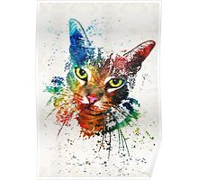 Colorful Cat Art by Sharon Cummings Poster