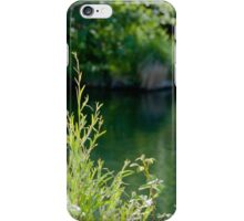 Putah Creek iPhone Case/Skin