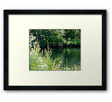 Putah Creek Framed Print