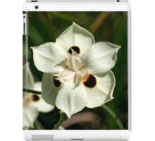 Peacock Lily iPad Case/Skin