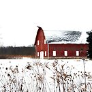 Ye Olde Winter Barn by Brian Gaynor